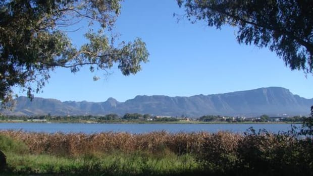The proposed commercial development of Princess Vlei, an urban wetland situated in the city of Cape Town, Africa, has been scrapped.