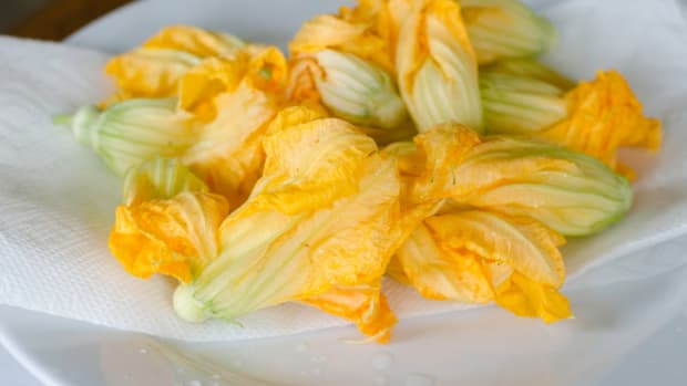 Wild Food, Forage, Foraging, Native Cooking, Dale Carson, Native American Foods, Foraged Foods, Indigenous Ingredients, Squash Blossoms, Day Lilies