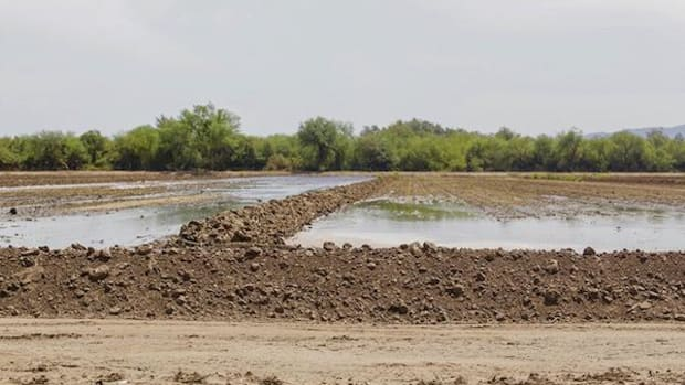 Pii Paash land on the Gila River Indian Community needs water for irrigation, but the tribe does not want the reclaimed water the community is getting in a trade for drinking water.