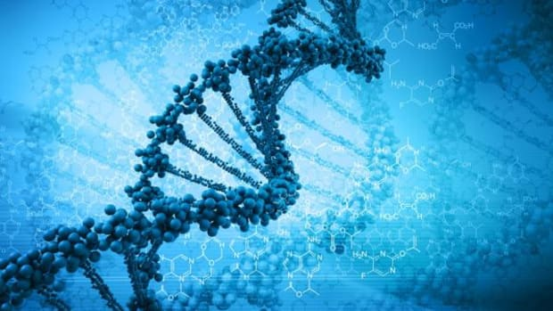 What was very interesting was the Y-chromosome (passed from father to son) results, which was not reported in the press.