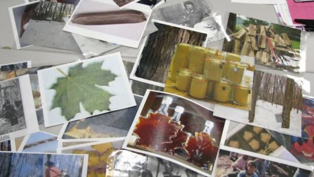 Photos of Sugar Bush camp and activities were used to stimulate the discussion on words used at Sugar Bush.