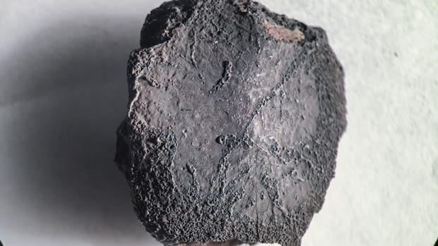 The first Arizona meteorite fall to bear an indigenous name is being studied by Arizona State University researchers who were fortunate enough to find fragments mere days after they started searching. Some of the meteorite fragments in the center's collection, according to a researcher, 'sit in the desert for hundreds of thousands of years.'