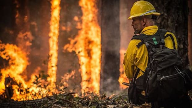 A firefighter at a prescribed burn at the Big Windy Complex fire near Galice, Oregon, in this August 2013 photo. Federal officials forecast a normal wildfire season for Arizona this year.