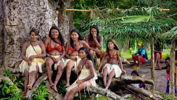 Land Rights, Brazil Indigenous, Land Rights Now