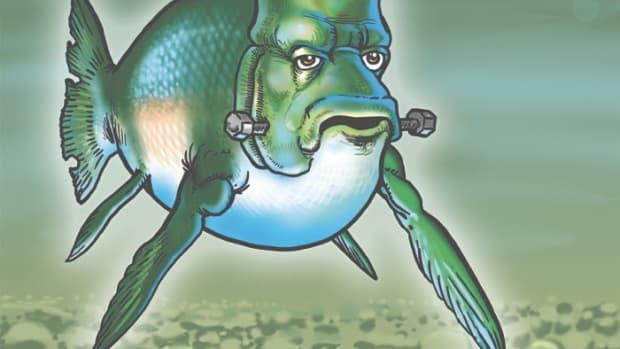 A Frankenstein / GMO or 'genetically-modified' salmon as portrayed by ICMN's own Marty Two Bulls.