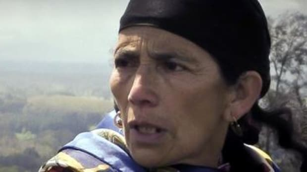 Machi Francisca Linconao, an activist currently in jail as a result of her fights against illegal logging in her region of southern Chile.
