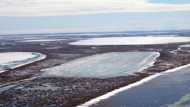 Permafrost below shallow lakes such as these on Alaska's coastal plain is thawing as a result of changing winter climate.