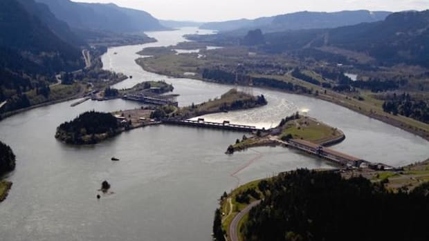 The Bonneville Dam 40 miles east of Portland spans the Columbia River between Oregon  and Washington, and is one of more than 60 dams in the Columbia River watershed that has had a  negative impact on salmonid populations of the basin.