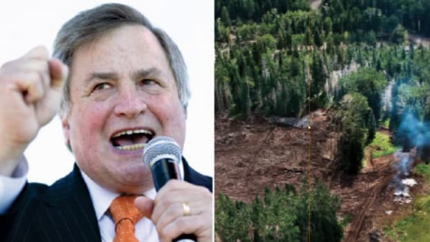 Dick Morris; San Francisco Peaks (AP; courtesy John Running)