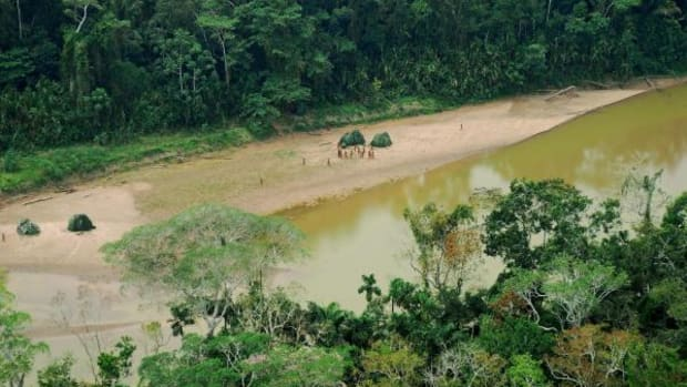 Uncontacted Natives in the Madre de Dios Reserve, to the south of the Nanti Terrotiorial Reserve.