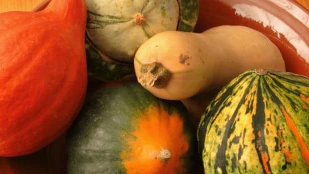 Buy winter squash varieties while prices are lower.