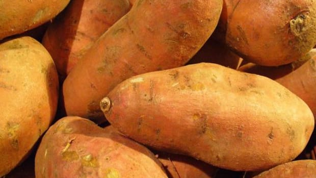 Want to try eating paleo? Start with some sweet potato recipes, they're a superfood.