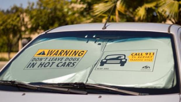 This one size fits all sunshade will keep your car cool while making a bold statement. You can protect dogs from the dangers of hot cars by displaying this message wherever you park.  The text warns anyone in view that leaving a dog in a hot car can be lethal, and urges anyone who sees a trapped dog to call 911.