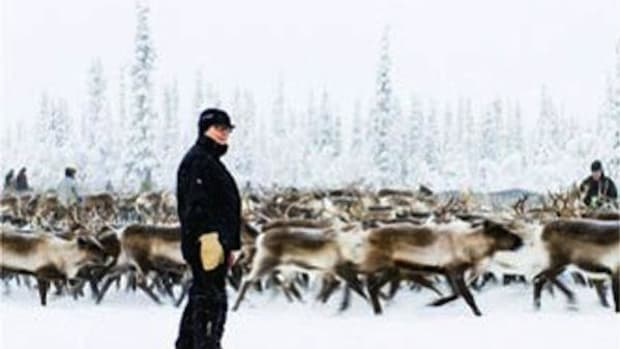 A Sámi herder in a winter reindeer corral near Jokkmokk, Sweden. The Sámi fight against an open-pit mine carries many parallels to the battle against Gogebic Taconite in Wisconsin.