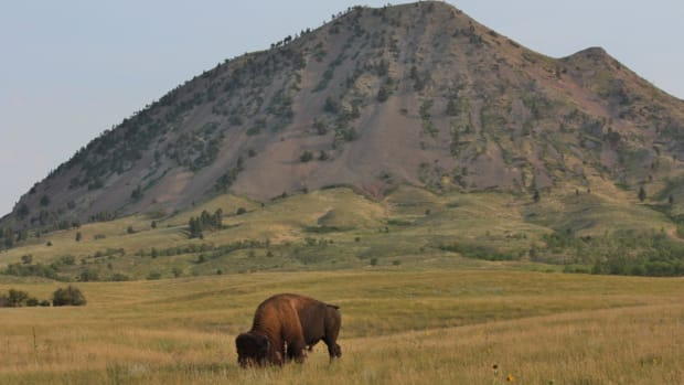 The Rosebud Sioux Tribe is asserting its treaty rights to oppose a transfer of the sacred Black Hills to the state of South Dakota.