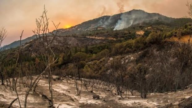 Charred landscape as a wildfire burns in California's Sequoia National Forest last month.