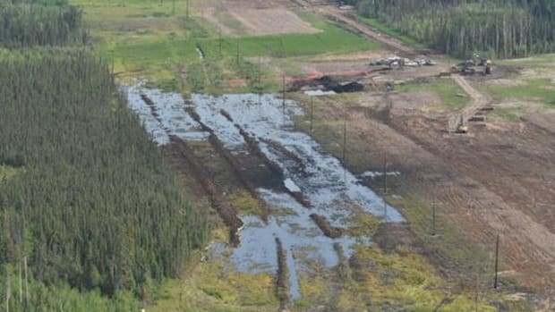 The spill at Nexen Energy's facility near Long Lake, Alberta, Canada, shown just after it happened in mid-July.