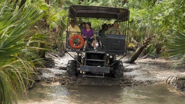 Tourists enjoy a swamp safari ride on the Big Cypress Reservation in south Florida
