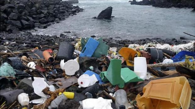 In this February 15, 2010 photo released by 5 Gyres, a coastal area of the Azores Islands in Portugal, is shown littered with plastic garbage.