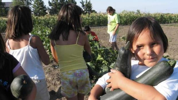 """Guided by traditional and spiritual principles, the Cheyenne River Youth Project® has incorporated the traditional Lakota values of generosity, spirituality, wisdom, respect, courage, honesty and patience into the development of its 2-acre, naturally grown, pesticide-free Winyan Toka Win (""""Leading Lady"""" in the Lakota language) garden."""