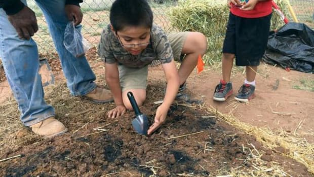 Navajo Nation Vice President Jonathan Nez's son, Christopher, had the opportunity to participate in the gardening challenge. He's planting seeds here, after the three raised garden beds were completed.