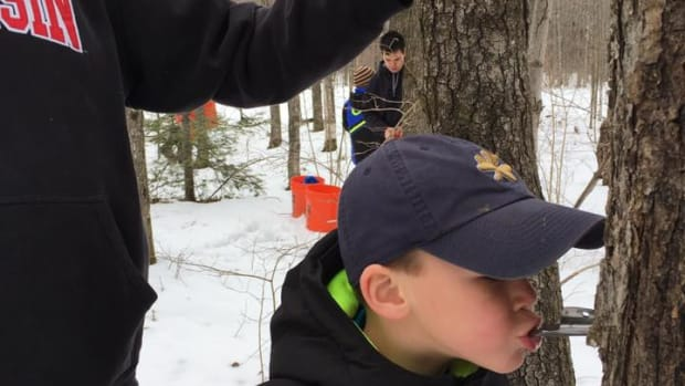 Howie Maday, 5, tastes the sap from a newly tapped maple tree during sugarbush season in March 2021. (Photo by Mary Annette Pember)