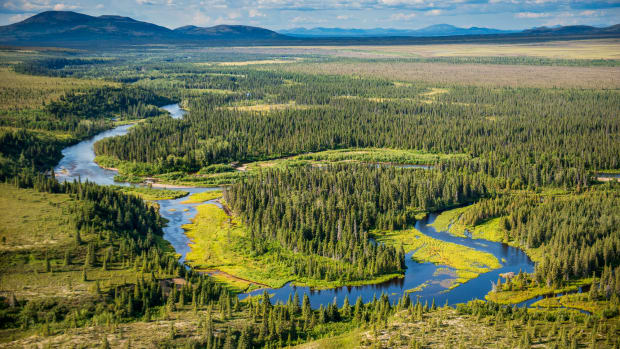 Pictured: The Bristol Bay watershed in Alaska nourishes thriving salmon runs.