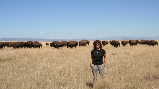 Photo of Plains bison researcher Maria Nieves Zedeno