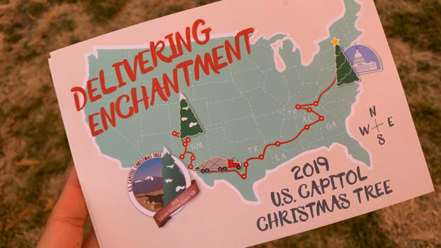 delivering enchantment - us capitol tree 2019