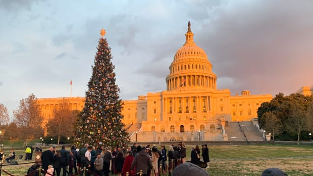 US Capitol and Christmas tree December 2019