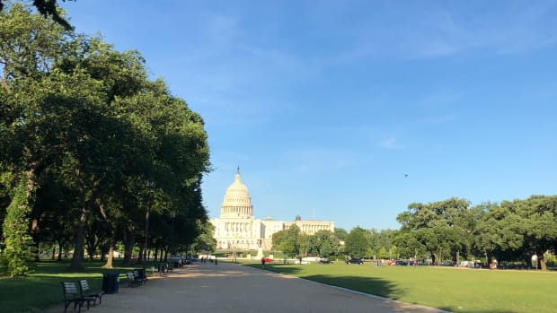 Capitol view: Spring on the Washington Mall. (Photo by Mark Trahant)