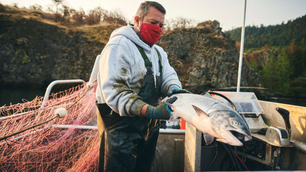 Sam George gillnet fishes the Columbia River for salmon in October off the Stanley Rock Treaty Fishing Access Site in Hood River. Photo credit: Leah Nash: