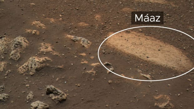 """This rock, called """"Máaz"""" (the Navajo word for """"Mars""""), is the first feature of scientific interest to be studied by NASA's Perseverance Mars rover.Credits: NASA/JPL-Caltech"""