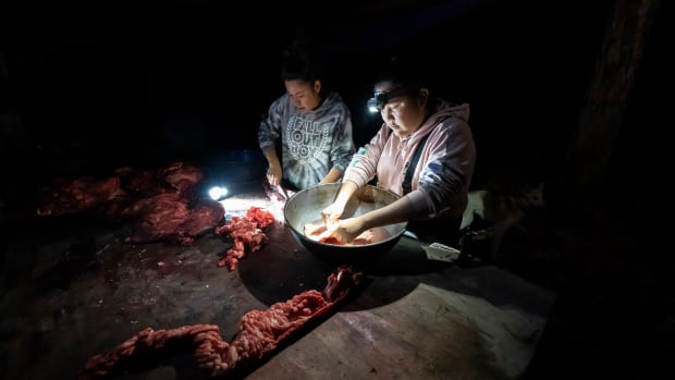 Giovanna Stevens, left, and Kori Williams clean moose intestines at Stevens' family hunting camp on Wednesday, Sept. 15, 2021, near Stevens Village, Alaska. For the first time in memory, both king and chum salmon have dwindled to almost nothing and the state has banned salmon fishing on the Yukon. The remote communities that dot the river and live off its bounty are desperate and doubling down on moose and caribou hunts in the waning days of fall. (AP Photo/Nathan Howard)