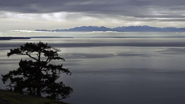 The San Juan Islands sit in the center of the Salish Sea, shown here, with Vancouver Island to the west, the Strait of Georgia to the north, mainland Washington state to the east, and the Olympic Peninsula to the south. To the southeast is Admiralty Inlet, the entrance to Puget Sound near Seattle. (Photo courtesy of wanderflechten, Creative Commons)