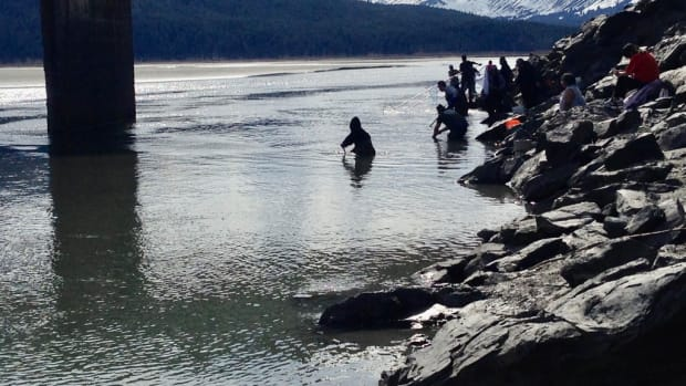 HOOLIGAN FISH - Some of the four or five dozen people dipnetting for eulachon fish under the Seward Highway bridge over the Twentymile River 37 miles outside Anchorage, Alaska, on May 18, 2021. (Photo by Joaqlin Estus, Indian Country Today)