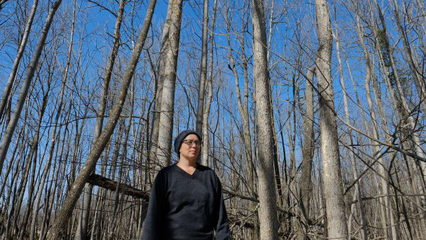 Basket weaver April Stone, a citizen of the Bad River Band of Ojibwe, looks out from a stand of black ash trees on the Bad River Reservation in Wisconsin in March 2021. The trees are now threatened by climate change and invasive beetles. (Photo by Mary Annette Pember/Indian Country Today)