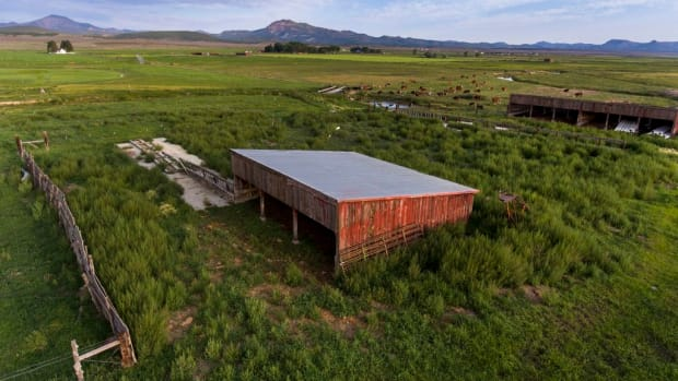The 150-acre Panguitch Research Farm, still in operation Aug. 12, 2021, is the former location of the Panguitch Boarding School for mostly the Kaibab Band of Paiutes in Arizona and the Shivwitz Band of Paiute Indians of Utah that operated from 1904 to 1909. In 1909, the property once owned by the U. S. government was transferred to the state of Utah where the land was used for experimental high-altitude farming. Today, it sits mostly vacant, except for the dilapidated lone brick building, at left in the distance, that dates back to the 1900's. (Leah Hogsten | The Salt Lake Tribune)