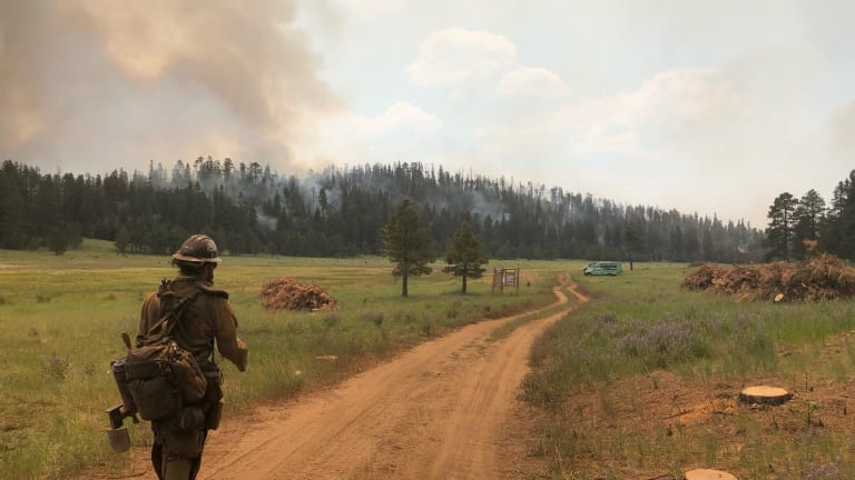 Private drone halts fire operations; Museum Fire is now 12 percent contained