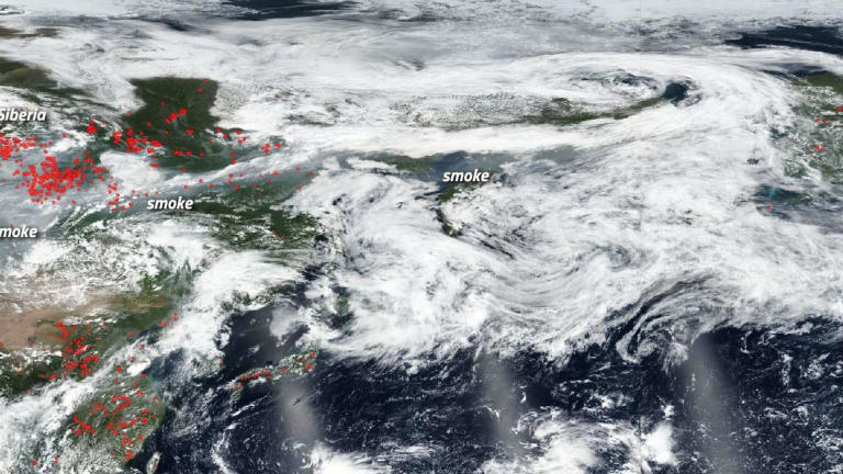 Huge wildfires in the Arctic and far North send a planetary warning