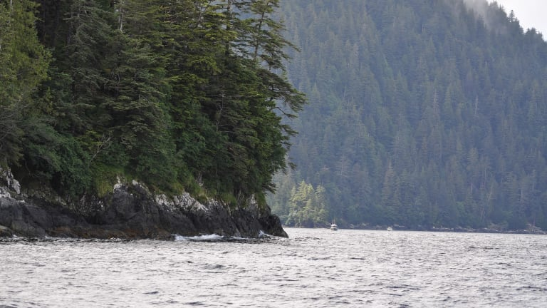 Council of Haida Nation and Government of Canada Announce Management Plan to Protect Seamounts Near Haida Gwaii