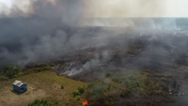 Inuit in solidarity with Indigenous Amazonians as thousands of forest fires blaze worsening international climate crisis