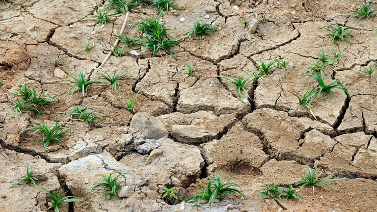 Forecast for spring: Nasty drought worsens