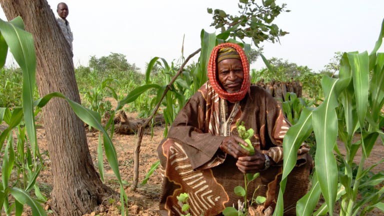 On climate and food, what's the lesson we insist on missing?