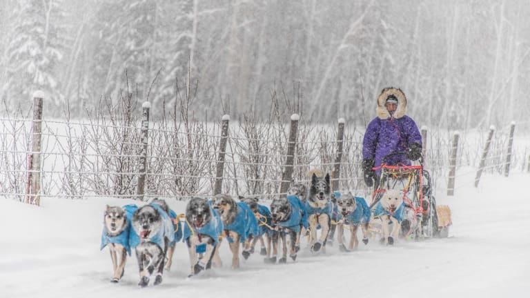 After 1,000-mile practice run, Martin Apayauq Reitan is rookie to watch in 2019 Iditarod