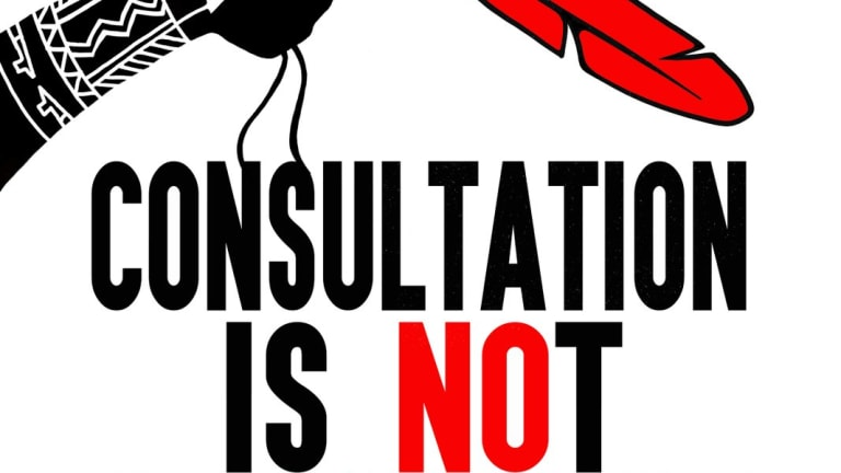 Nothing less than consent: Consultation and the diminishment of Indigenous rights
