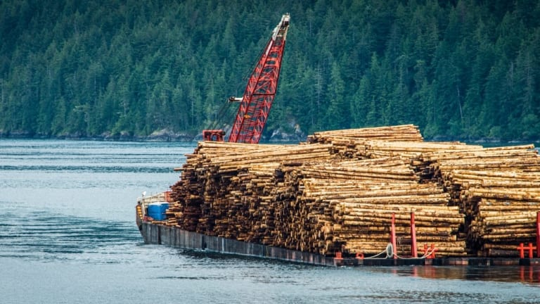 5 Alaska tribes protest groundwork for Tongass logging