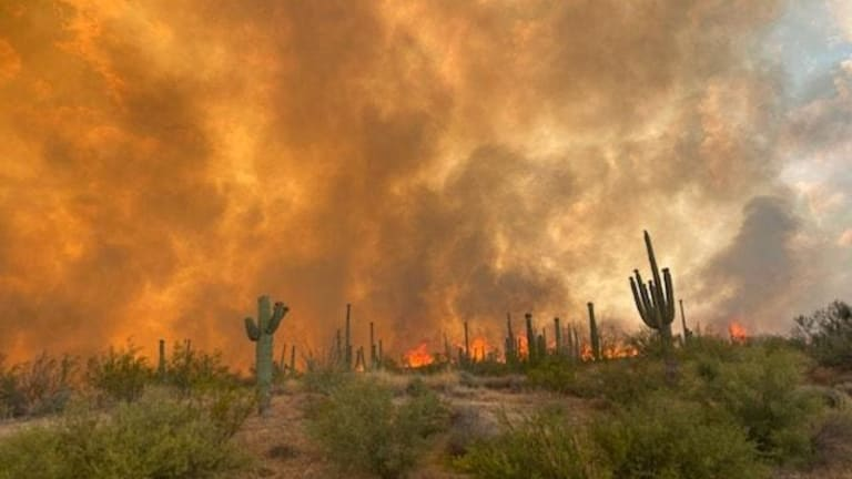 Bush Fire near Mesa, now the largest in the country, forces evacuations