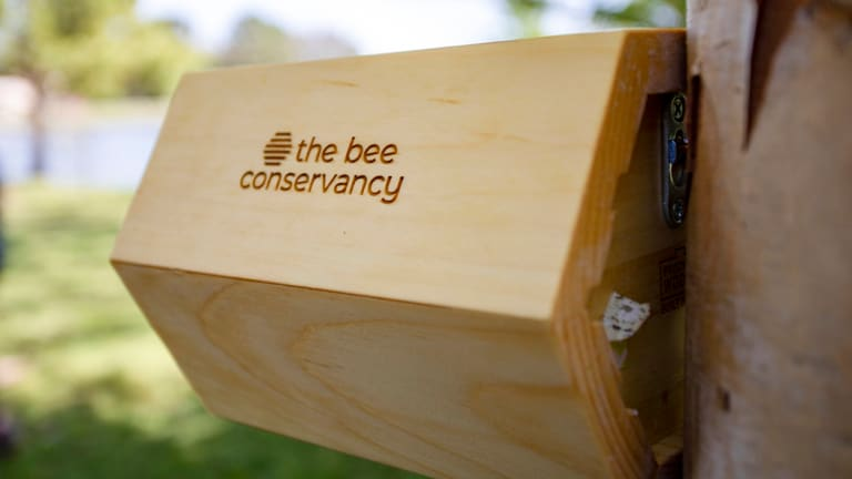 Cherokee Nation installs two new bee pollinator homes provided by The Bee Conservancy's 'Sponsor-A-Hive' program