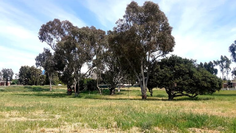 Puvungna sacred site investigation on agenda of California Native American Heritage Commission meeting, Friday, July 30